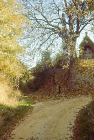 De Jeugdkapel met links de weg van Hoeselt naar Biesen