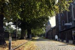 Alden Biesen, Lindendreef. Rechts de kerk, de poort, enz. Links de Hertenberg